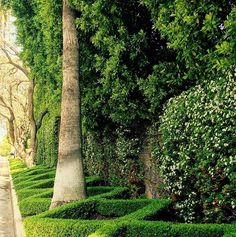 If this isn't inspiration, I don't know what is. How fantastic is this front nature strip.