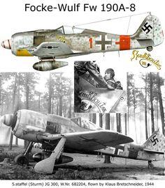 Focke Wulf FW 190A-8: BFD