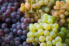 Grapes are rich in antioxidants and have a huge amount of vitamin C - perfect ingredient for skincare!