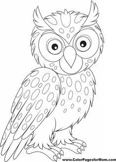 Owl Coloring Page 26                                                                                                                                                      More