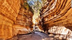 "Mutua Matheka says this image was: ""Photographed inside the gorge at Hell's Gate National Park in Naivasha."""