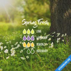 Spring Fresh - Essential Oil Diffuser Blend