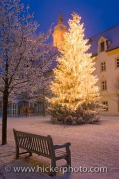 Photo of a beautiful scene of a brightly lit christmastree at night, Freising, Bavaria, Germany.