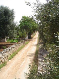 tra i mandorli e gli ulivi di Puglia