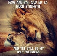 HOW CAN YOU GIVE ME SO MUCH STRENGTH AND YET STILL BE MY ONLY WEAKNESS. Kb