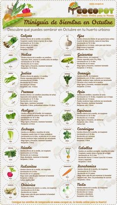 Guía de siembra