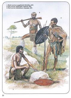 1:Hubi warrior,Langalibalele Rebellion,1873.2:Zulu warrior,Nokhenkhe regiment,1879.3:Pedi warrior,Sekhukhune campaign,1879 African Culture, African History, Military Art, Military History, African Warrior Tattoos, Black History, Art History, Zulu Warrior, African Royalty