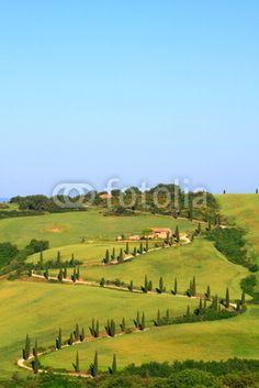 Zypressen,Kurve,Hügellandschaft,Toskana,Val d Orcia,La Foce