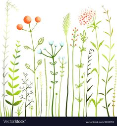 Rustic colorful meadow growth illustration set. Vector EPS10. Download a Free Preview or High Quality Adobe Illustrator Ai, EPS, PDF and High Resolution JPEG versions.