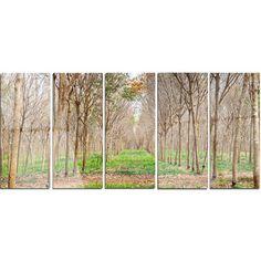 DesignArt 'Beautiful Rubber Plantation Photo' 5 Piece Photographic Print on Canvas Set