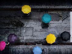 Festival de paraguas - Colores