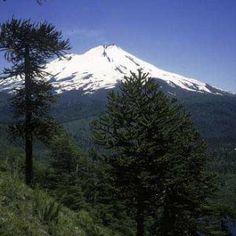 Cile: quando andare ad Araucania