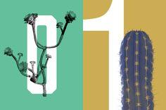 Plant Brushes v2 by envirographic on @creativemarket