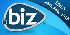 Biz Domain Name for your Business   YoursDomain.Com Web Hosting Blog
