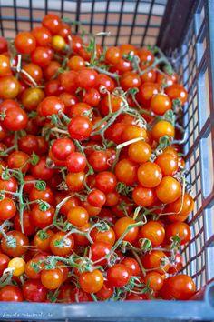 Rosii cherry Canning Pickles, Vegetables, Cooking, Food, Canning, Baking Center, Veggies, Koken, Veggie Food