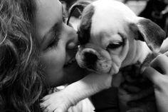 I want an English Bulldog puppy so badly.