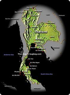 Un viaggio alla scoperta dei sapori, dei profumi e delle dolcezze della cucina tailandese.