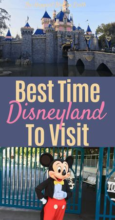 When is the best time to visit Disneyland? There's something for everyone all year-long at the Disneyland Resort, and I'm here to help you discover when to go to Disneyland with your family! Disneyland Vacation Packages, Disneyland Tips, Disneyland California, Disney California Adventure, Disneyland Resort, Disney Vacations, Disney Travel, Family Vacations, Cruise Vacation