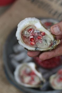 Oysters with Pomegranate Mignonette Huur de Oesterkoning in voor uw party www. Seafood Dishes, Fish And Seafood, Seafood Recipes, Ceviche, Wine Recipes, Cooking Recipes, Shucking Oysters, Raw Oysters, Oyster Recipes