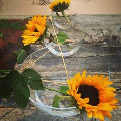 Magnor - designed by Sverre Uhnger Glass Vase, Wreaths, Trends, News, Plants, Design, Home Decor, Homemade Home Decor, Door Wreaths