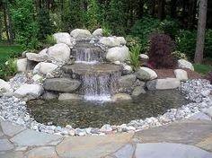 dog pond.Dog yard - My Doggy Is Delightful