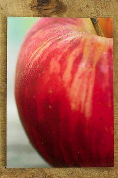 Heritage Apple Photo Print Postcard  Food by cubits