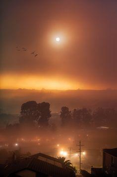Misty Moonlight ~ Melbourne, Australia