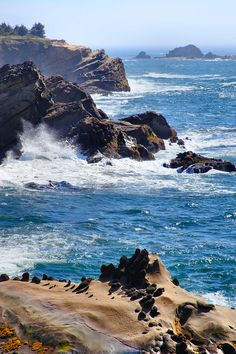 ✯ Oregon Coast (Oregon's coastline goes from rocky to caves to beautiful wave washed rock figures to sand dunes. It's amazing in such a short distance--relatively.)