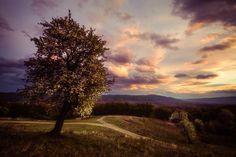 Spring by Ovidiu Caragea on 500px