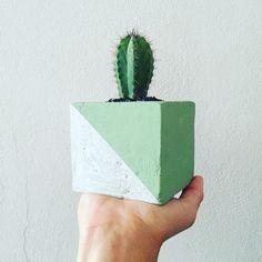 Concrete vases by a.j