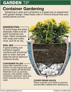 Container Gardening Tips Watch KTWU's Gardening block on Saturdays from 11:30am-12:30pm!