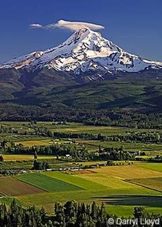 Hood River Valley, Oregon! Been there, done that! :)