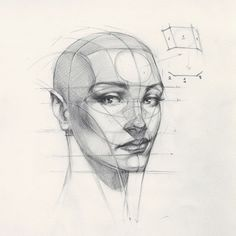 "34.6k Likes, 153 Comments - FERHAT EDİZKAN (@edizkan) on Instagram: ""Reilly Head Abstraction method, portrait from imagination #imagination #illustration #drawing…"""