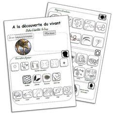 Les fiches d'identité d'animaux Teaching Kids, Techno, Activities For Kids, Fairy Tales, Preschool, Religion, Bullet Journal, Classroom, Education
