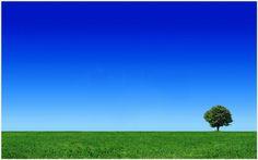 Green Field Landscape Wallpaper | green field landscape wallpaper 1080p, green field landscape wallpaper desktop, green field landscape wallpaper hd, green field landscape wallpaper iphone