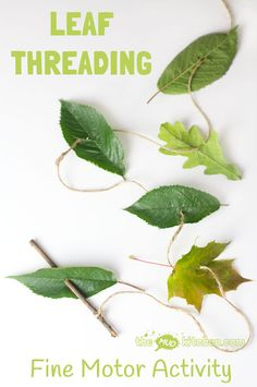 ALL NATURAL LEAF THREADING ACTIVITY for kids - engage with Nature, get creative and develop fine motor skills. This nature craft is fun a great way to get kids outside and develop their fine motor skills. A fun Summer craft for kids. Reggio Emilia, Forest School Activities, Nature Activities, Fine Motor Activities For Kids, Creative Activities For Children, Nursery Activities Eyfs, Outdoor Preschool Activities, Nature Based Preschool, Kids Motor