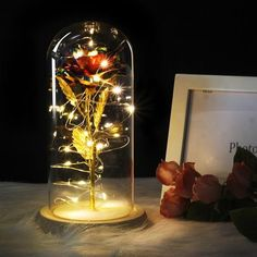 Enchanted Rose, Lampe Rose, Beauty And Beast Rose, Real Beauty, Rose Dome, Rose In A Glass, Forever Rose, Lumiere Led, Led Licht