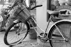 Small towns are charming... . . . . #exploregeorgia #dahlonega #bicycles #chasinglight #justgoshoot #acertainslantoflight #makemoments #toldwithexposure #acolorstory #vsco #vscocam #nothingisordinary #visualsoflife#openmyworld #ourplanetdaily #moodygrams #agameoftones #exkart #finditliveit #exploremore #mextures #natgeo #travelstoke #wonderful_places #artofvisuals  #bnw_life #bnw_society #bnw_planet #bnw_soul