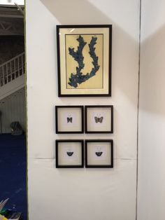 My Display Of The Ornamented Butterfly Collection From Art Source Which Ran In RDS Dublin