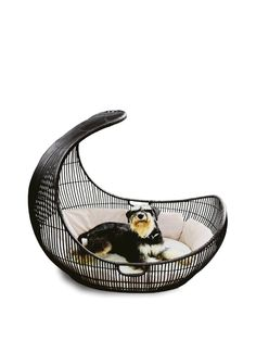 Voyage pet bed by Kenneth Cobonpue. Featured in the May 2011 issue of D pages.
