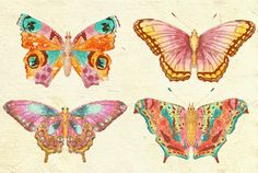 #printable #butterflies