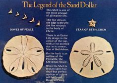 The Legand of the sand dollar