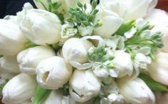 Nederlandse glorie: bruidsboeket met tulpen!