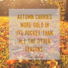 I've got one hand in autumn's pocket and the other one is hailing a taxi cab... #swoonquotes #qotd #quoteoftheday #quotes #quote #quoteme #swoonweekly #swoonworthy #swoon #fall #autumn #gold #seasons #pocket #onehandinmypocket #alanismorrisette #jimbishop #leaves #leaf #beautiful