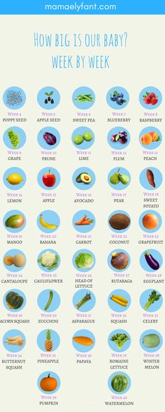 How big is our baby? This neat visual uses every day food items to compare how big your baby is week by week! Be My Baby, How Big Is Baby, Baby Week By Week, Avocado Pear, Baby Weeks, Pregnancy Tracker, Family Planning, Baby Bumps, Future Baby