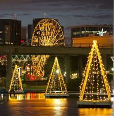 best of long beach finding your christmas tree and viewing the citys lights long beach