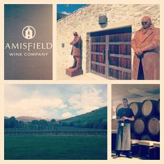 Winery Four. #amisfield #wine #queenstown #weregoingonanadventure #tandetakenz Lush Beauty, Wineries, Time Travel, New Zealand, Vineyard, Polaroid Film, Pure Products, Beautiful, Wine Cellars