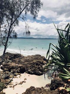 The Byron Bay, Australia Hike You Need to Take — Sapphire & Elm Travel Co. Byron Bay Beach, Beach Aesthetic, Beautiful Beaches, Places To Travel, Travel Photography, Ocean, Adventure, Bedroom Posters, Tea Packaging