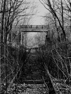 Abandoned rail track at Fresh Pond. DiscoverFreshPond.com