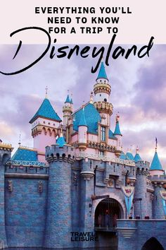 Everything You'll Need to Know for a Trip to Disneyland Best Family Vacations, Disney Vacations, Family Travel, Disney Facts, Disney Tips, Disney California Adventure Park, Disneyland Resort, Travel And Leisure, Travel With Kids
